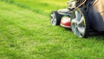 Best Grass Cutting Services in Grand Rapids